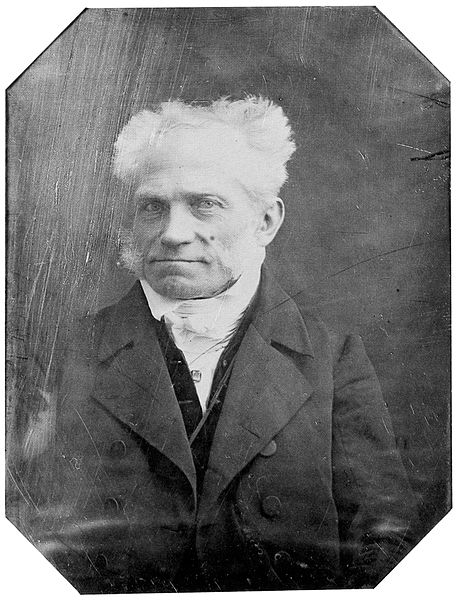 schopenhauer essays and aphorisms review of related